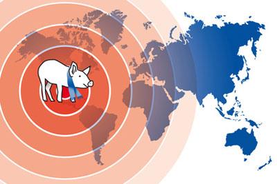 schweinegrippe-pandemie